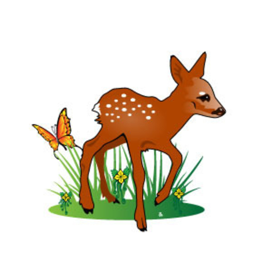Fawn Illustration Vector | FreeVectors