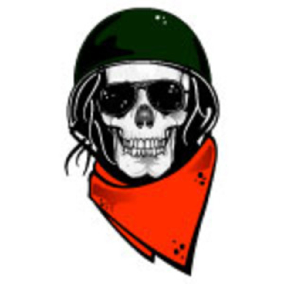Skull With Military Helmet Vector