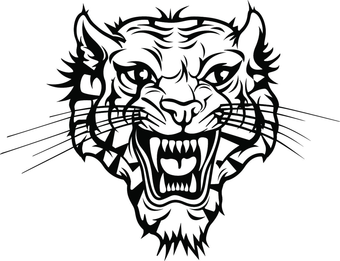 Tiger Vector Image VP
