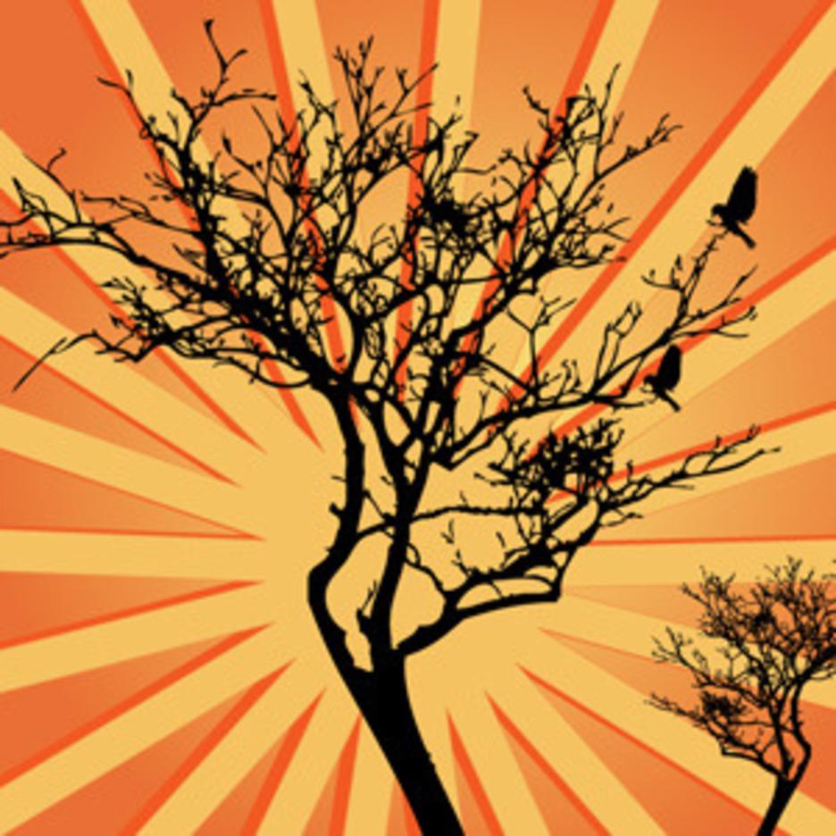 Sunburst Background Tree Vector