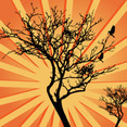 Sunburst Background Tree Vector