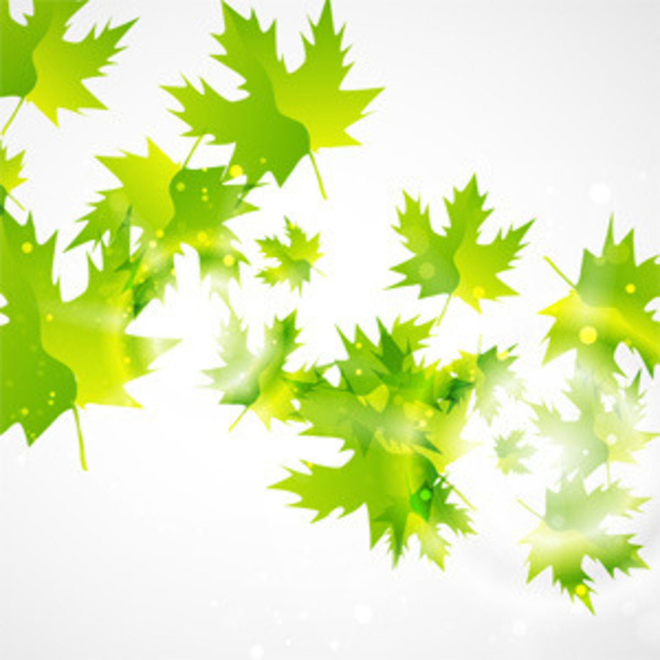 Abstract Green Leaf Background Freevectors
