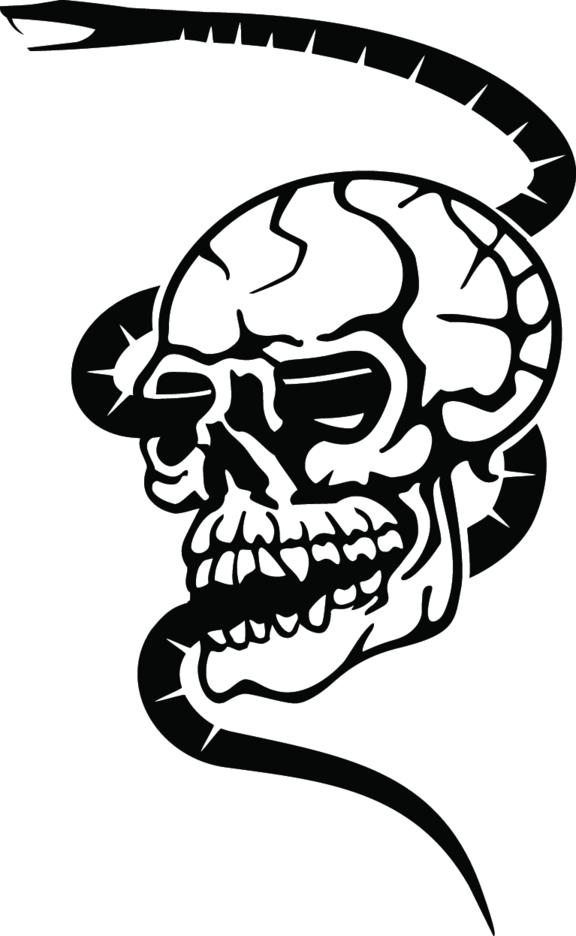 Skull Free Vector 5