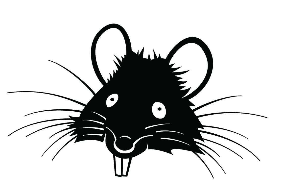 rat vector vp freevectors rat vector vp freevectors