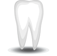 Vector White Tooth