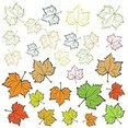 Autumn Leaves Background. Back To School!