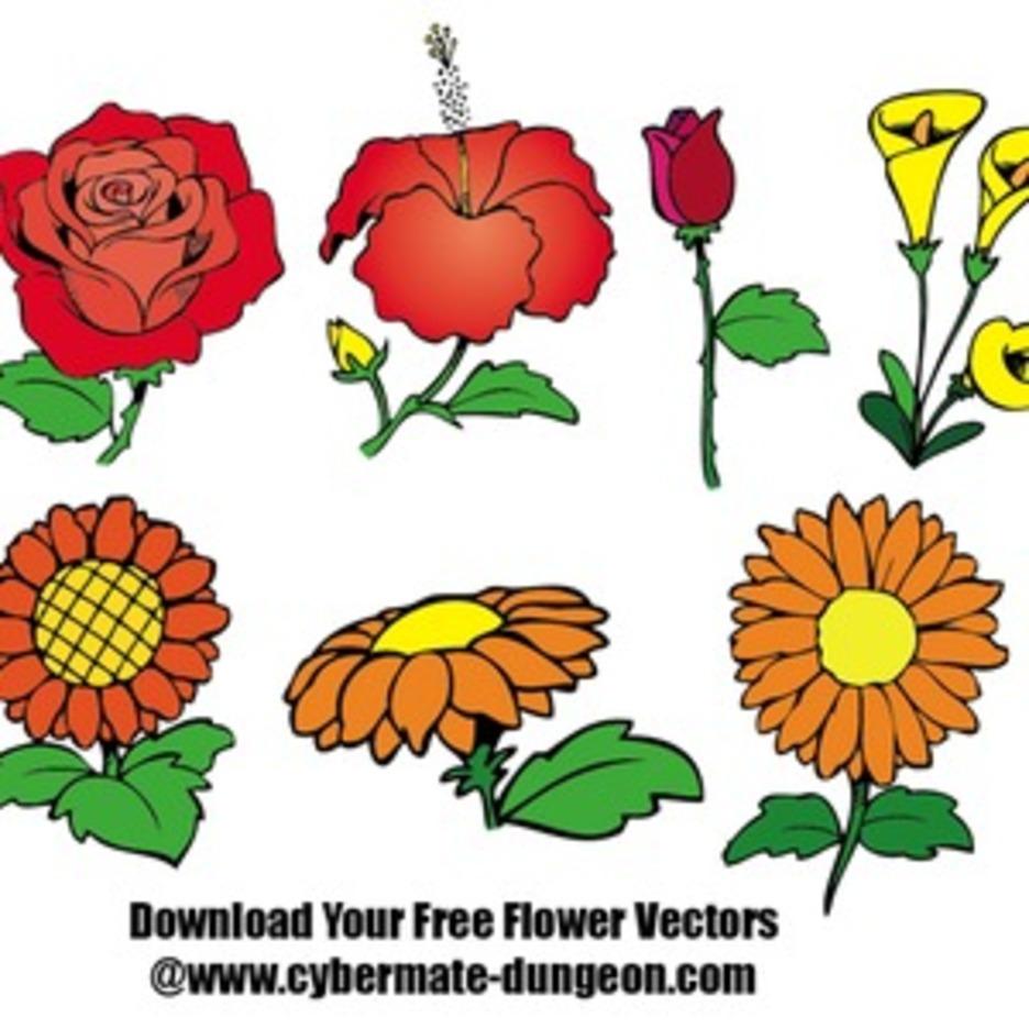 FlowersPlants