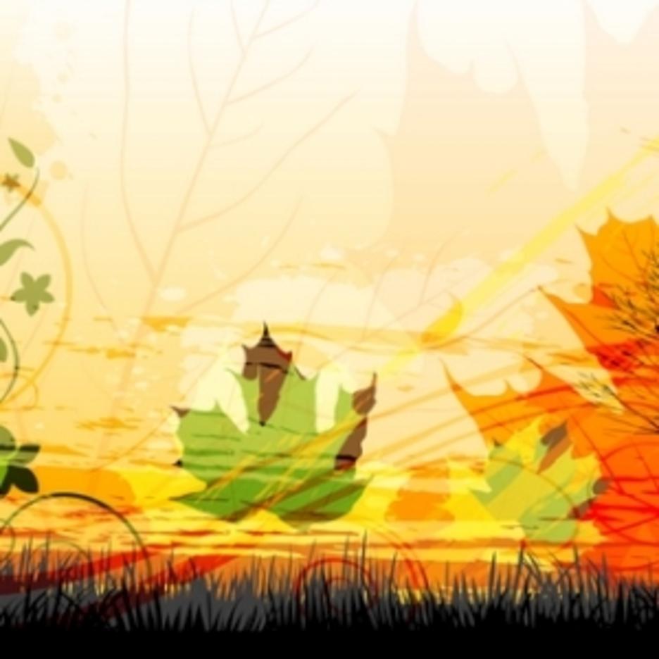 Attractive Autumn Card