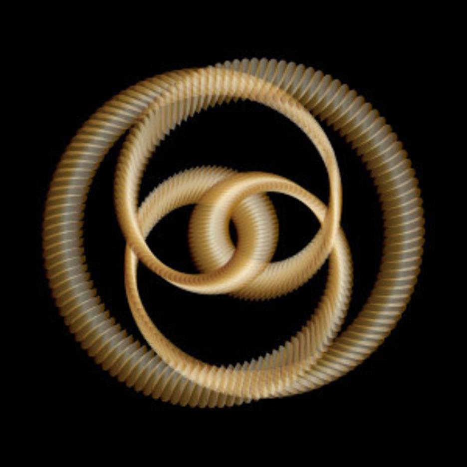 Golden Knot - Vector Art