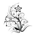 Illustrator Floral