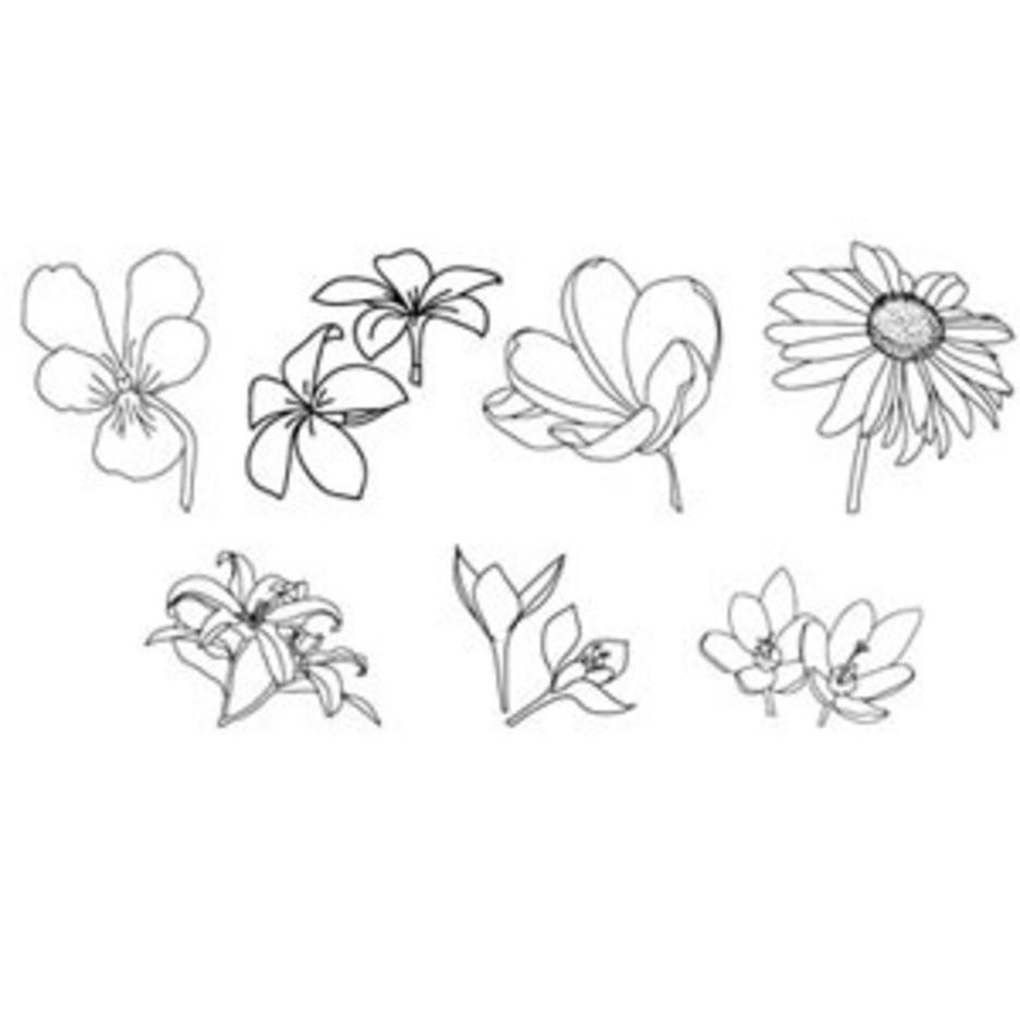 Hand Drawn-floral-vectors