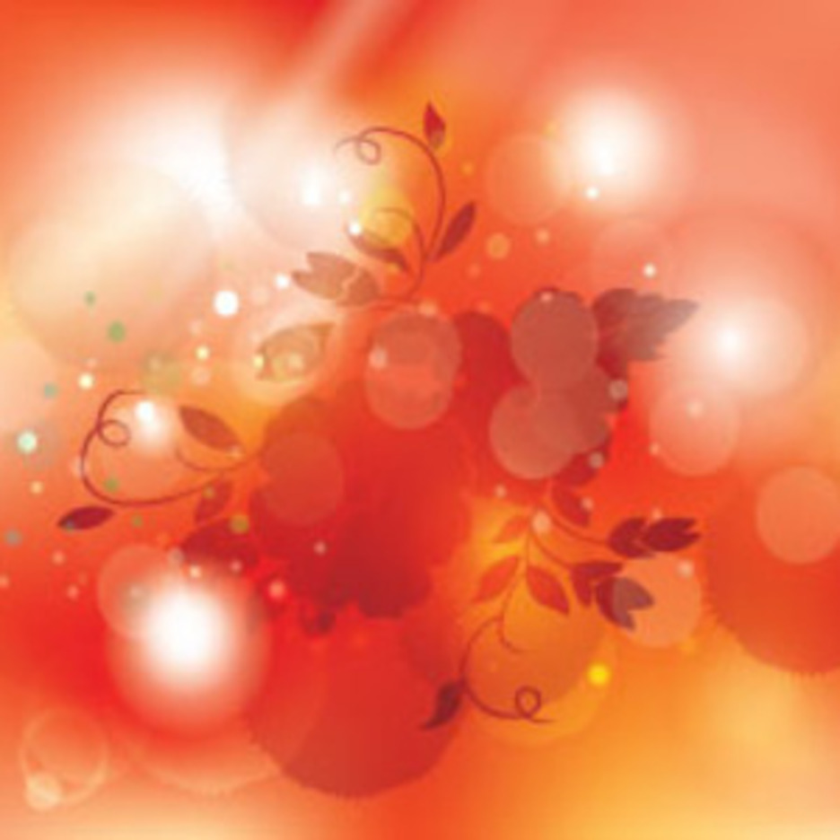 Flowers In Shinning Orange Vector Design