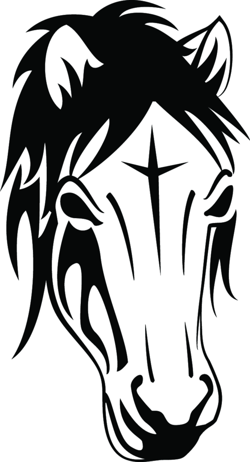 Black Horse Vector Image