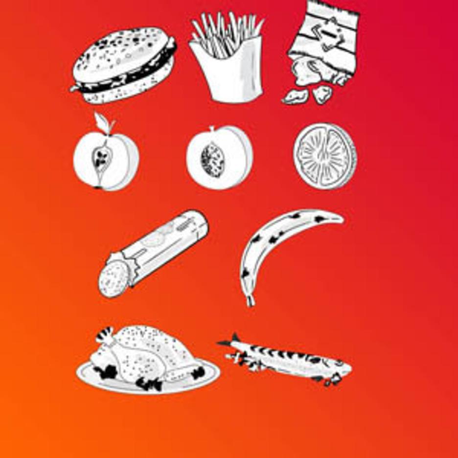 Vector Food Doodles.