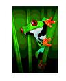 Green Jungle Frog