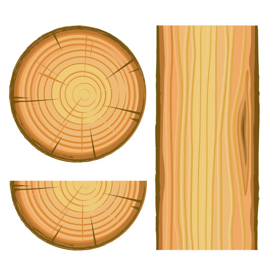 Wood Illustration Vector
