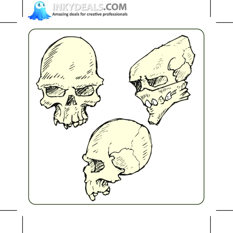 Skulls Set 2