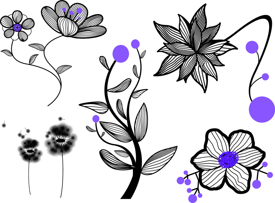 Vector Flowers By Vectorvaco.com