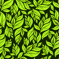 Dark Green Floral Background