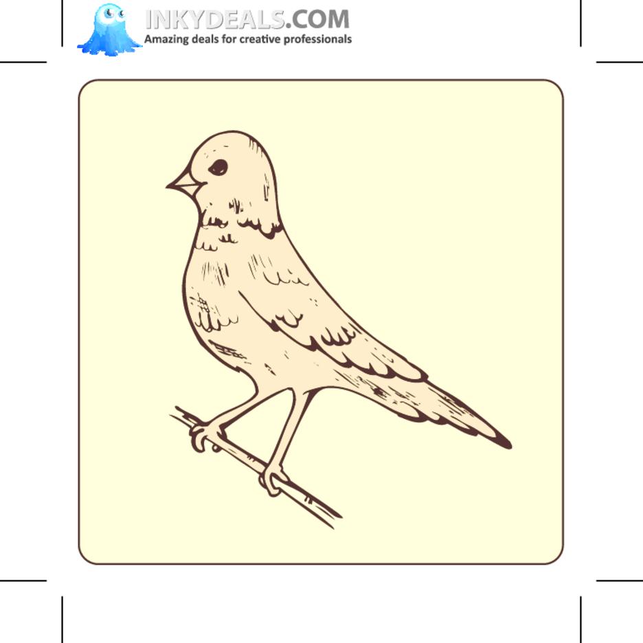 Bird 14