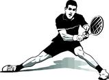 Novak Djokovic Tennis Star