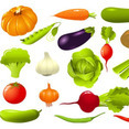 Vegetable Illustration Pack