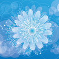Blue Background With Circles And Flowers