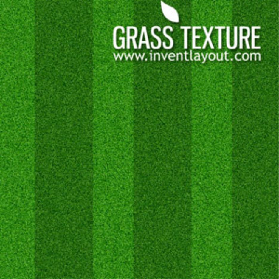 Grass Texture-Seamless