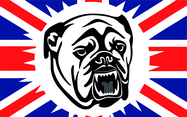 Bulldog & British Flag