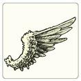 Wing 9