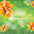 Four Orange Flowers Green Vector Background