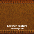 Dark Brown Leather