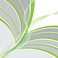 Green Spring Lines Abstract Card