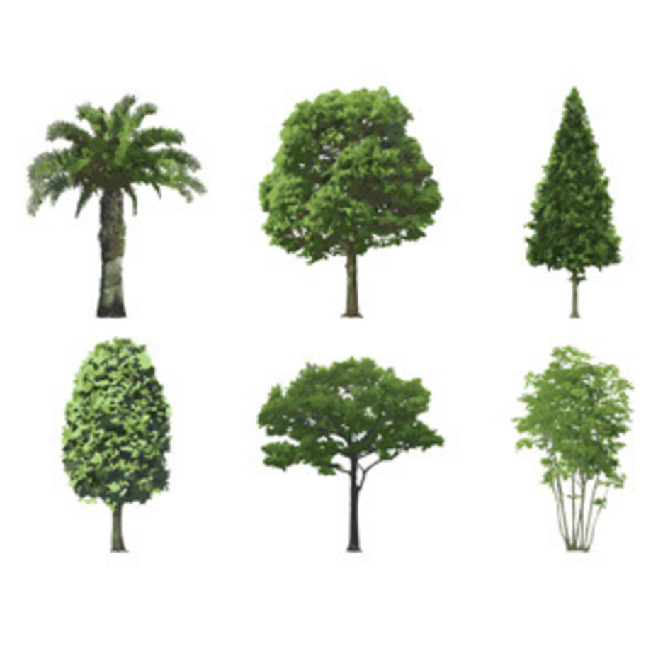 Six Green Trees