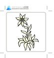 Floral 96