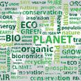 Eco Typography Vector Background Design