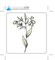 Floral 99