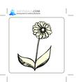 Floral 80