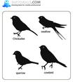 Birds 25