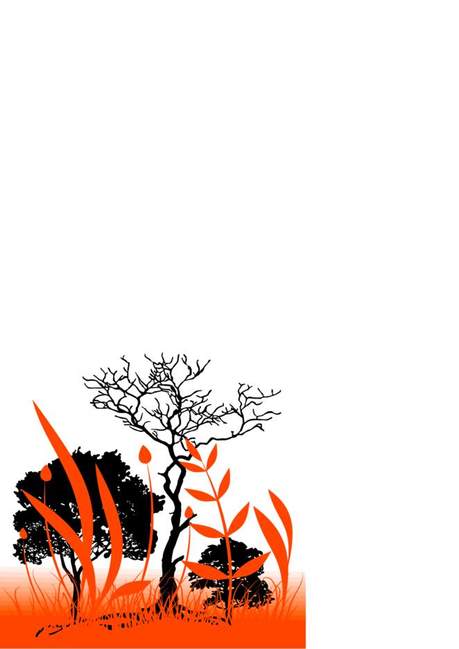 Orange Nature Background