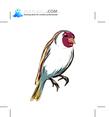 Birds 52