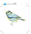 Vector Bird 53