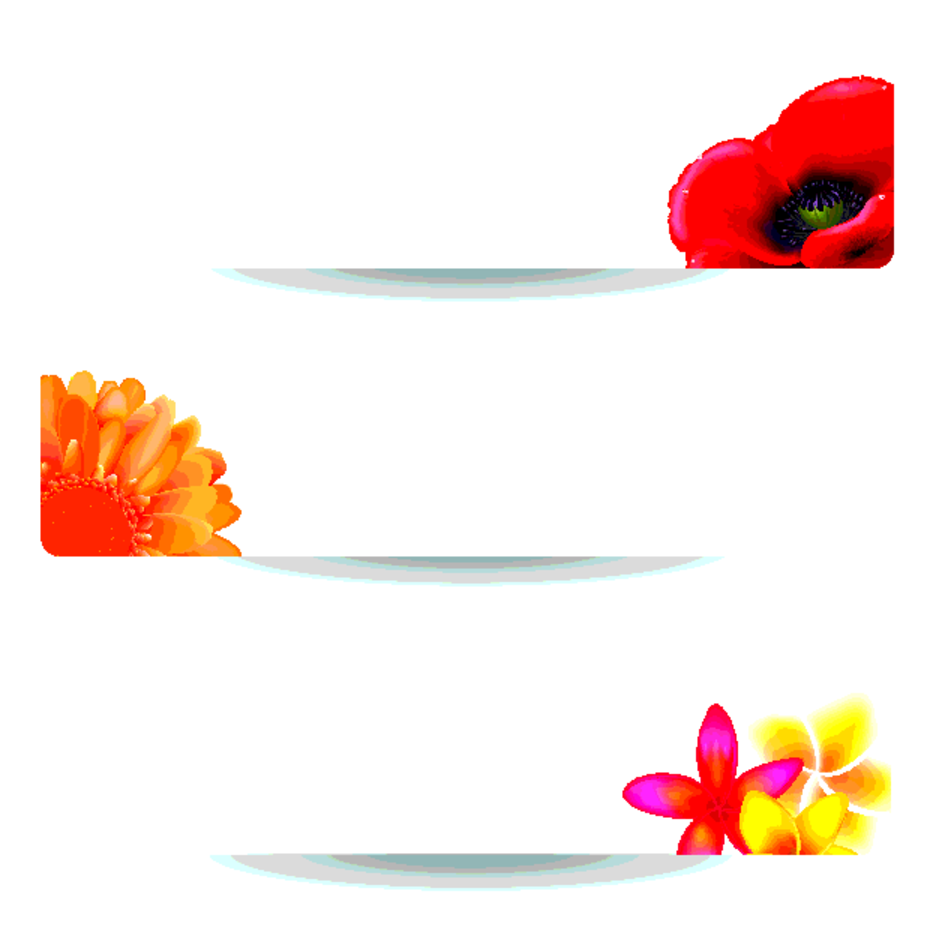 White Floral Banners