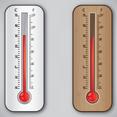 Thermometer Vector Design