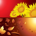 Autumn And Summer Season Background Vectors