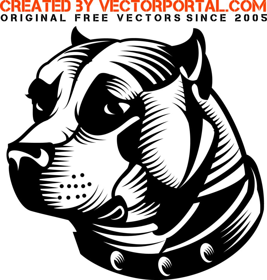 Pit Bull Dog Vector