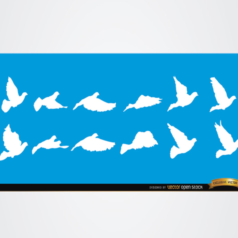 Dove and Bird Vector Silhouettes