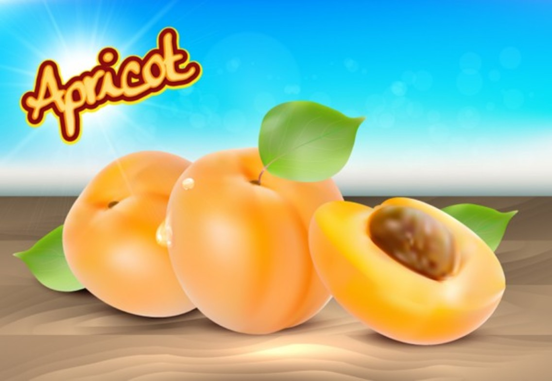 Realistic Apricot Vector Background