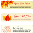 Autumn Leaves Banner Vectors