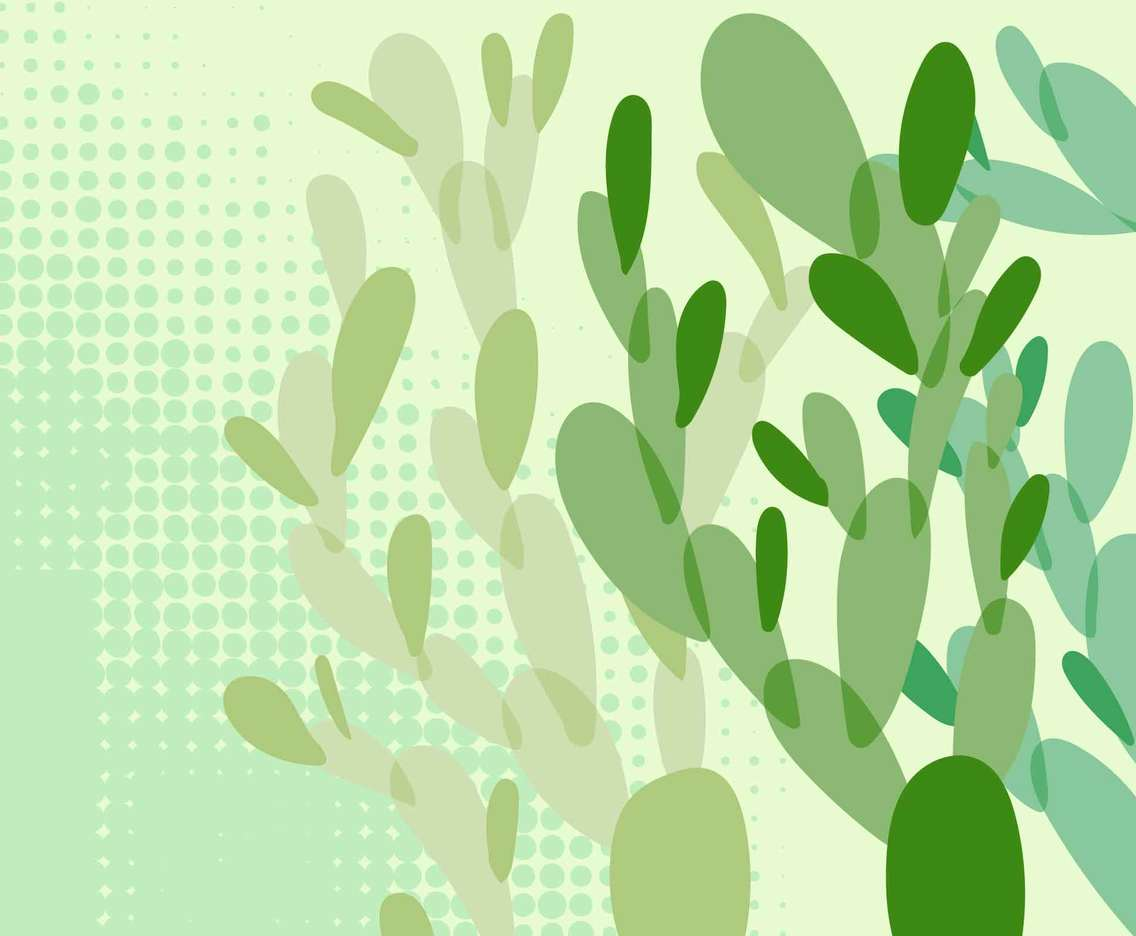 Green Cactus Abstract Background